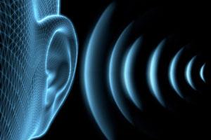 บริษัท สงขลา ไบโอแมส จำกัด เสียงดัง (Noise)